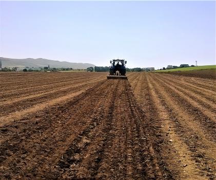 Ploughed farm field