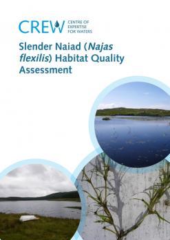 Slender Naiad Habitat Assessment
