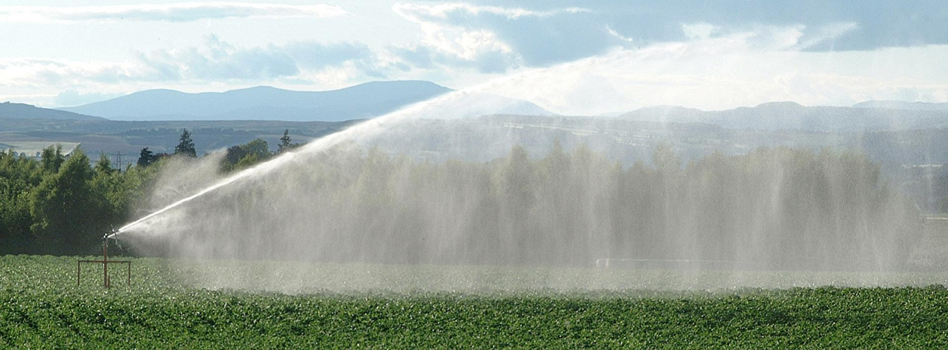 Image showing water sprayer in action