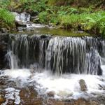 Waterfall in small stream