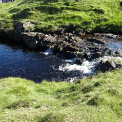 Stream with strong colour